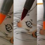 La coloration en trois phases